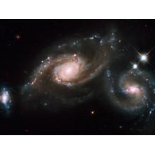День Тротуарной Астрономии